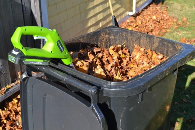 Chopping Leaves