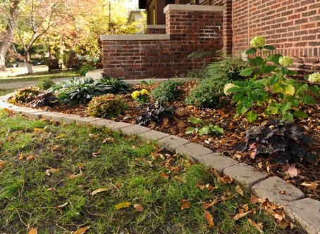 Caution! Adding Mulch: Too Much of a Good Thing?