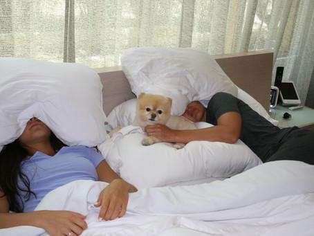 Why I Invented Sleep Crown