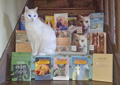 Simon and books fina blue eyesl.jpg