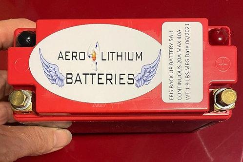 EFIS Backup Battery - 5.0Ah