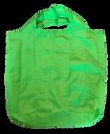 Bag green.png