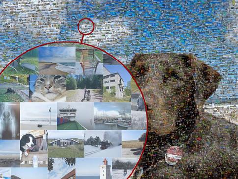 Hunde-Mosaik
