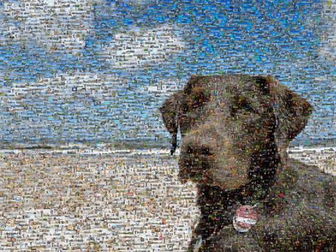 Mosaik-Bild