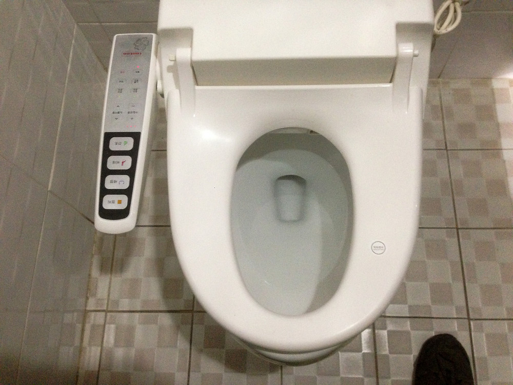 A Korean toilet seat