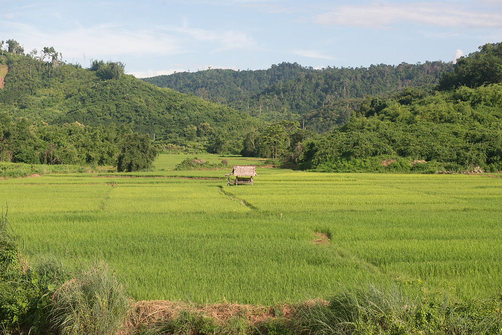 The typical view in Northern Laos