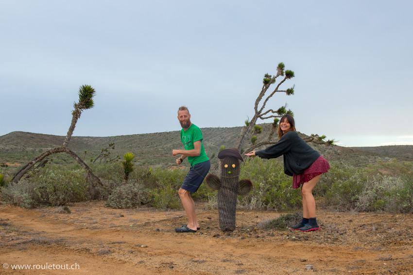 Cactus land Baja