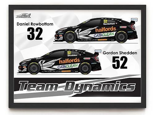Team Dynamics 2021 A3 - A0 Poster