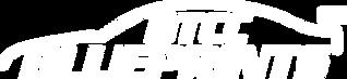 BTCCBlueprintsLOGO(WHITE).png
