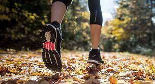 Courir en automne.jpg