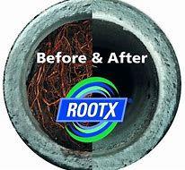 root x 2.jpg