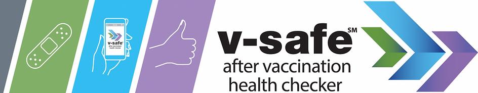 Logo de V-Safe