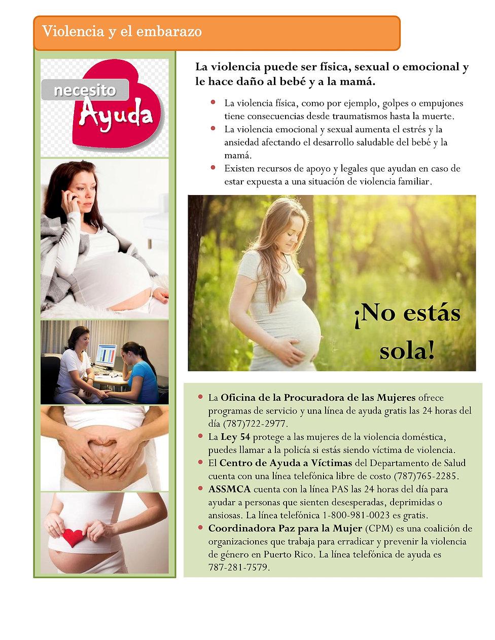 6. Violencia y el embarazo 2018.jpg