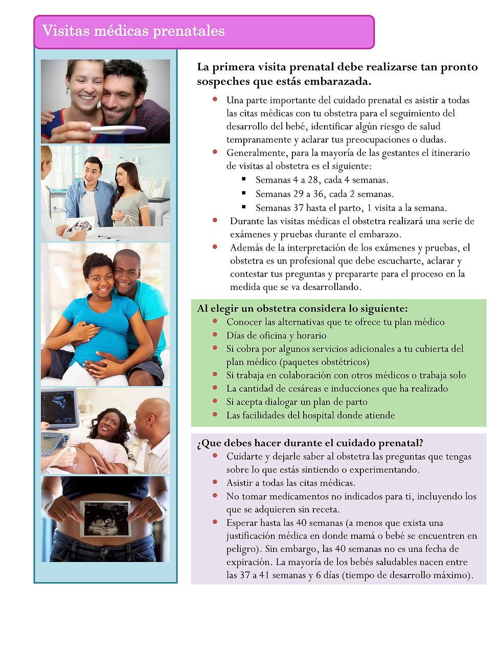12._Visitas_médicas_prenatales_2018.jpg