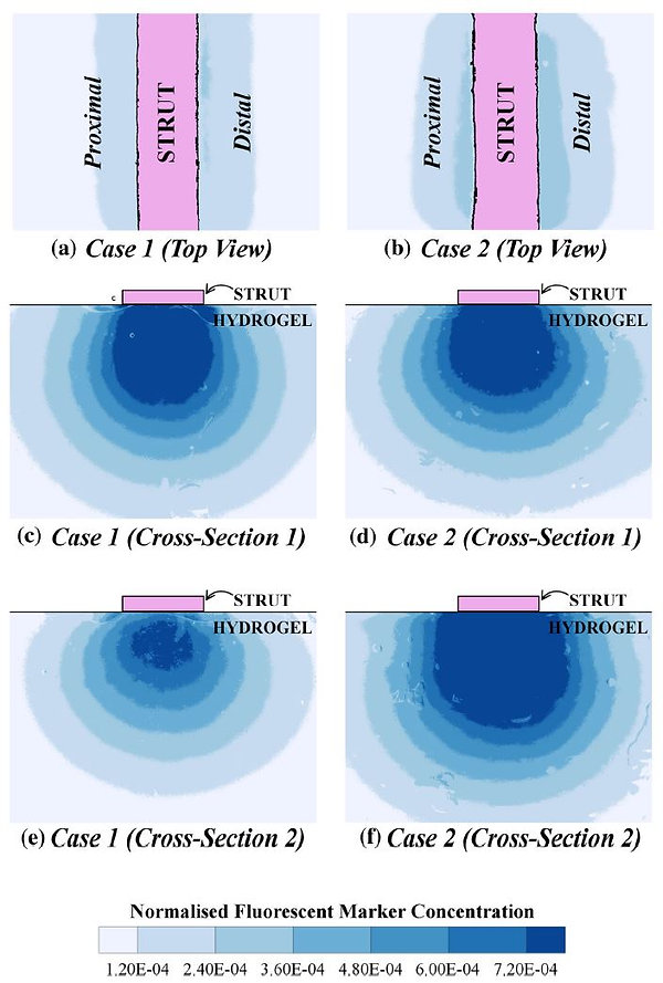 comparision 3 - experimental.JPG