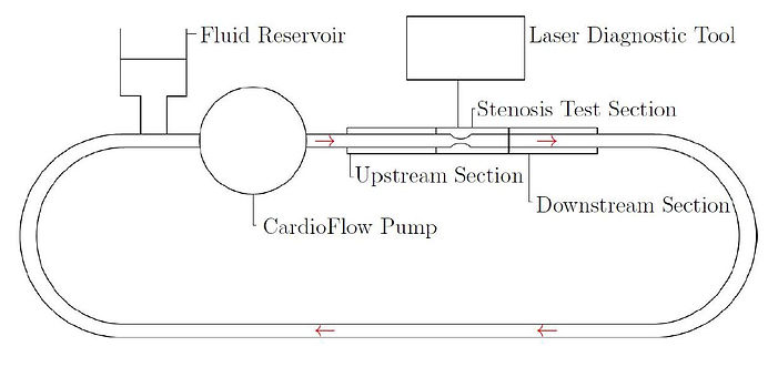 experimental setup.JPG