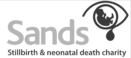 Sands logowebsite 3_0_edited.png