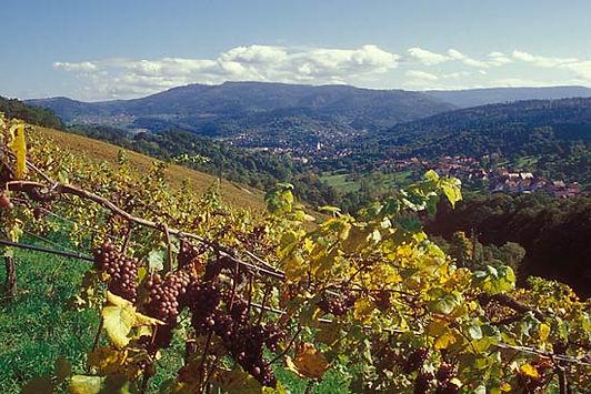 Staufenberg Herbst.jpg