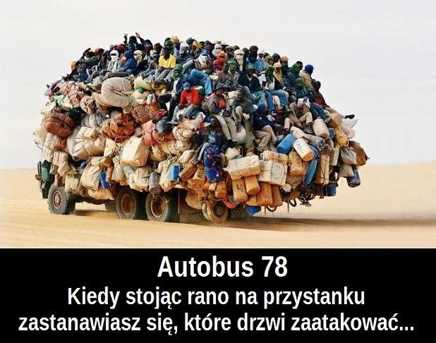 autobus78.jpg