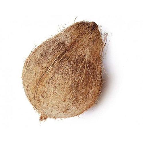 Coconut 1 pcs( नारळ )