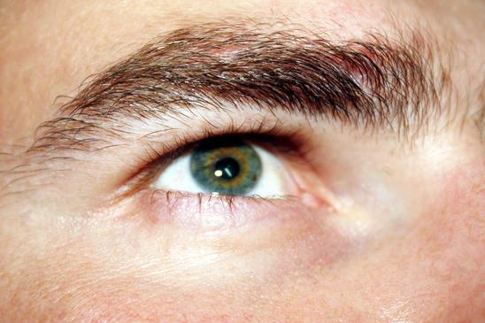 El ojo y los trastornos comunes de la visión
