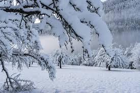Afgelasting door winterweer
