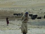 Nomad, Ladakh