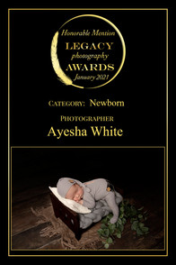 Legacy Awards Honourable Mention 3