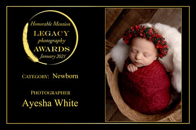 Legacy Awards Honourable Mention 2