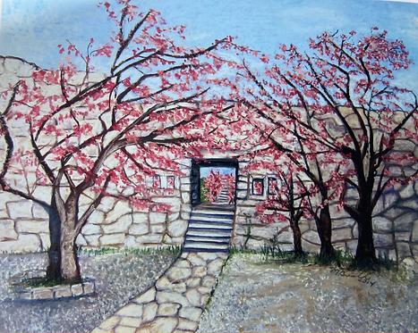 Nakijin Castle During Cherry Blossom Season