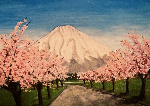Mt. Fuji From Base Fuji - Cherry Blossom Season
