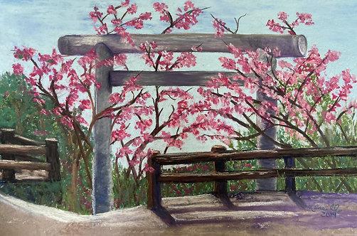 Nanguskuku Castel Ruins During Cherry Blossom Season