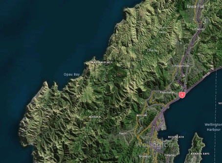 Aerial Surveys Wins Wellington Contract