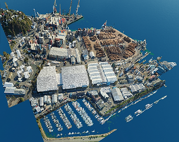 Nelson Port (Colourised LiDAR Point Cloud High Density 2020)