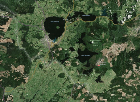 Aerial Surveys Wins Rotorua Contract