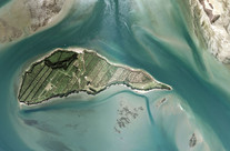 Motuhoa Island, Tauranga Harbour, Bay of Plenty (2011)