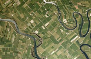 Inch Clutha, Clutha River, Otago (2020)