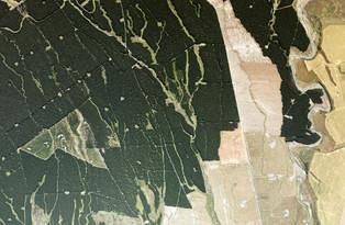 Karioi Forest, Whangaehu River, Manawatū-Whanganui (2021)