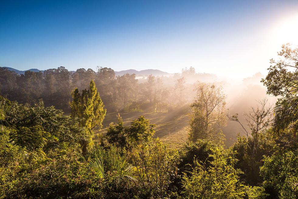 Landschaftsfotografie | Bellingen, Australien