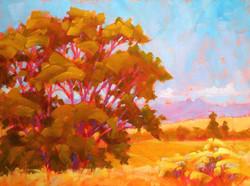 September in Taos  12 x 16