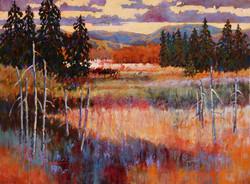 Meadow Twilight