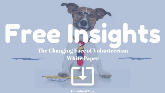 volunteerism in associations