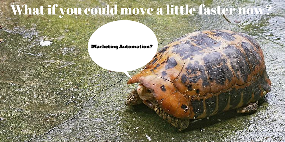 Marketing Automation at Nonprofits is helping many win the race!