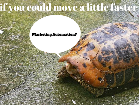 5 Key Factors Driving the Race towards Marketing Automation at NPO's