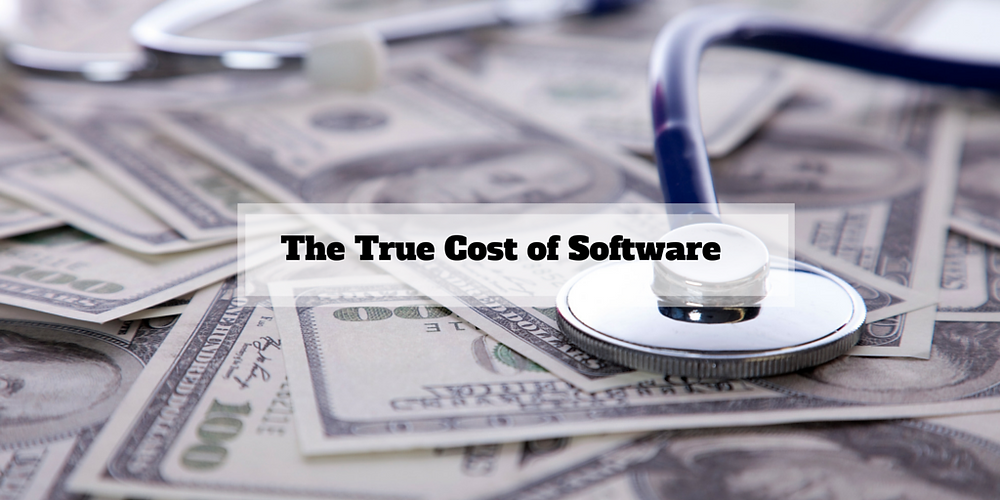 The Cost of Software License