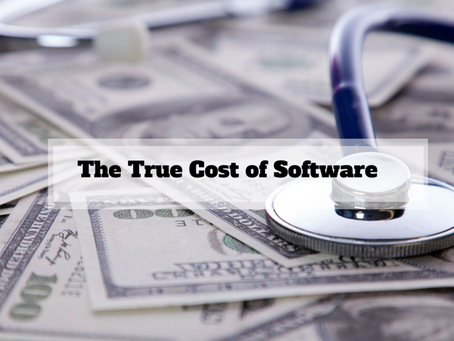 What No One Tells You About The Cost of Software