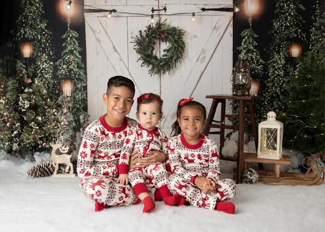 Holiday Photographer - Long Island, NY