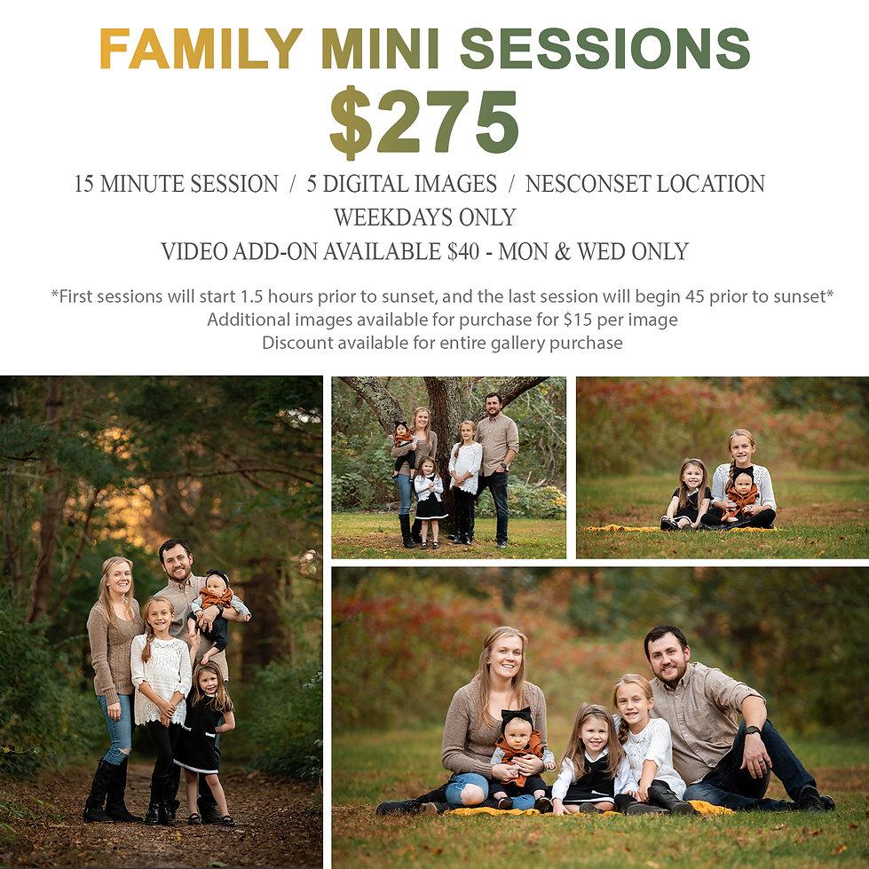 Family Minis.jpg