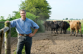 Mark - with cattle.jpg