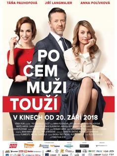1809_Po čem muži touží-poster.jpg